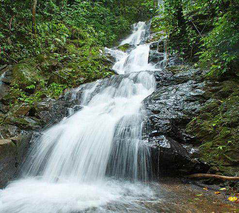 Khaosok Rainforest Resort a fantastic place to spend your holiday in Khaosok National Park