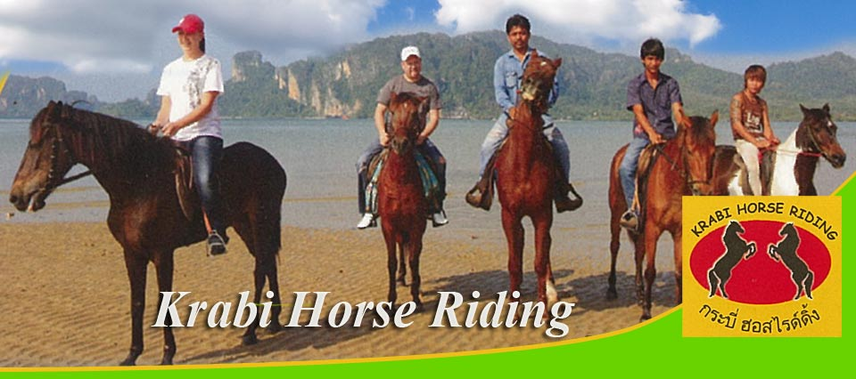 Krabi Horse Riding Trekking Family Fun Activities Krabi Aonang Thailand