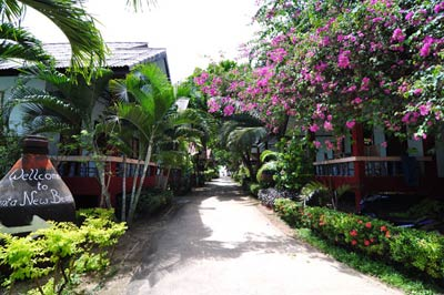 Lanta New Beach Bungalows Resort Lanta Island Krabi Thailand