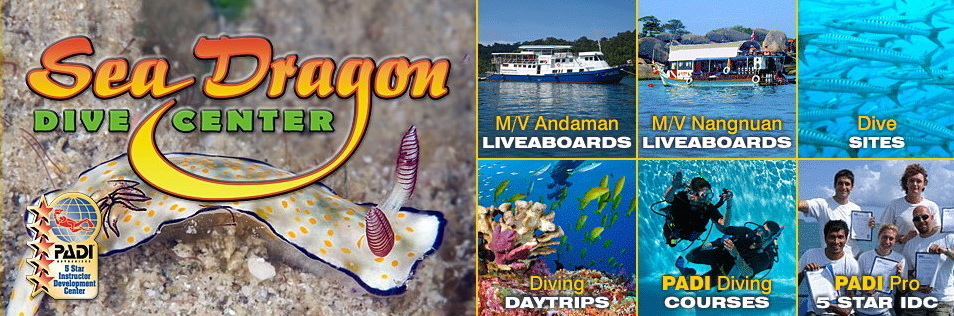 Sea Dragon Dive Center offers the absolute best all-around choices to divers having all levels of experience visiting the Similan Islands & Khao Lak areas of Thailand.
