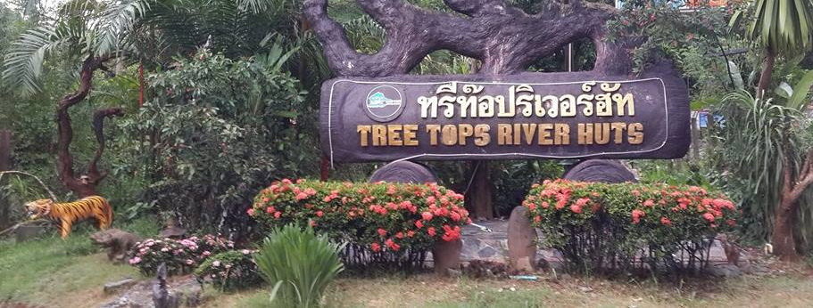 Tree Tops River Huts Tree House Bungalows Khao Sok National Park Thailand
