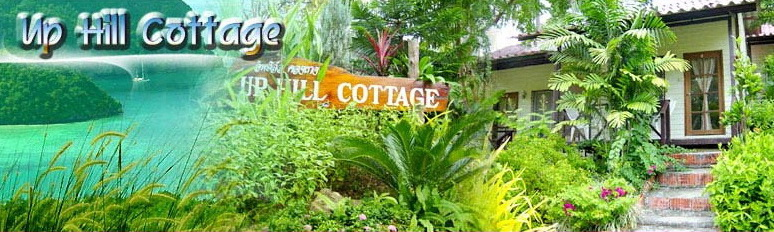 Up Hill Cottage - Bungalow Resort Phi Phi Island Thailand